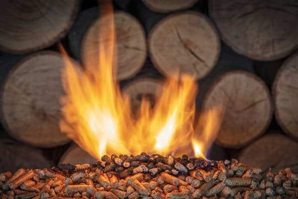 A energia de biomassa é obtida através da combustão de material orgânico.
